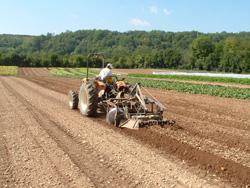 Planches permanentes et travail du sol